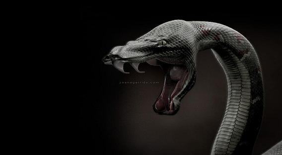2013 год - год Змеи